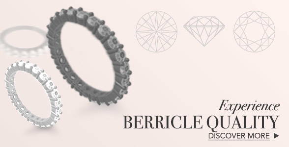 About BERRICLE